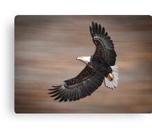 An Artistic Presentation Of The American Bald Eagle Canvas Print