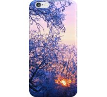 Blue Lonely Winter, Brannon Mt. NW Arkansas, USA iPhone Case/Skin