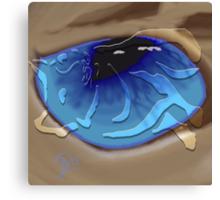 Siamese cat eye with cat emossement Canvas Print