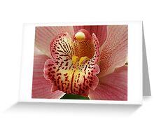 orchid macro Greeting Card