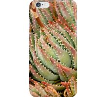 Cacti Cluster iPhone Case/Skin