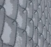 Frosted Fence by Lilydee