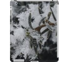 Frosted Branch iPad Case/Skin