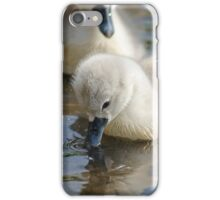 Cygnets 02 iPhone Case/Skin