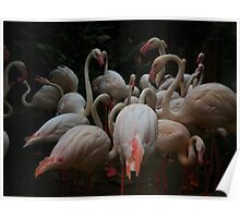 Flocking Flamingos  Poster