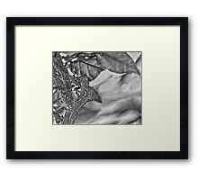 Trunk of a Flower Black and White Framed Print