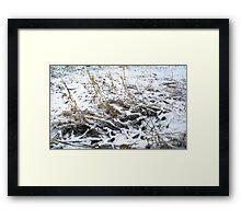 Snow that fell softly Framed Print