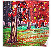 Bright Fall Leaves  Poster