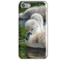 Cygnets 04 iPhone Case/Skin