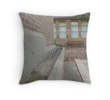 Old School, Old Ways Throw Pillow