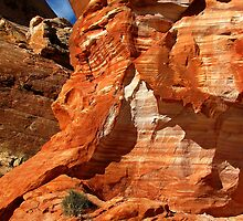 Valley of Fire (2) by Gili Orr