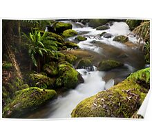 Taggerty River, base of Keppels falls Poster