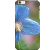 Blue Poppies iPhone Case/Skin