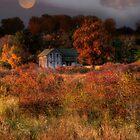 Autumn Moon by Magi