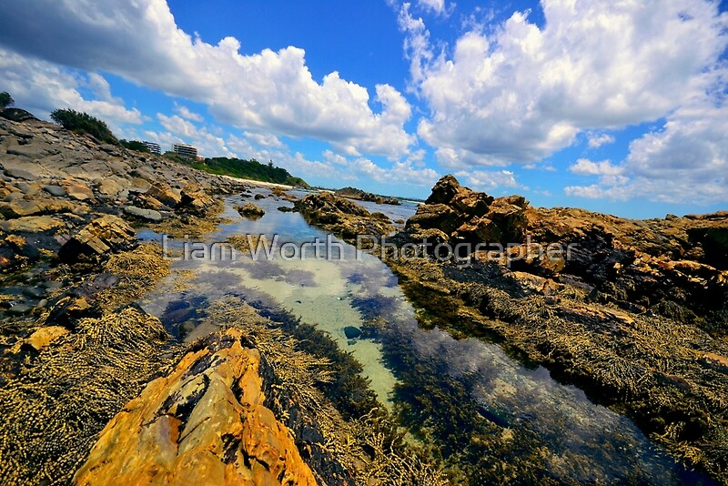 Forster Australia  City pictures : Forster Beaches NSW Australia