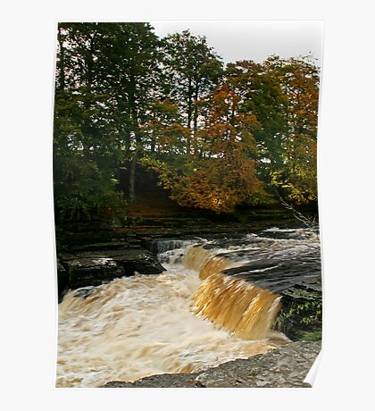 Aysgarth Force Poster