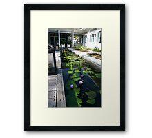 Tropical Zen Framed Print