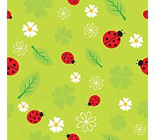 Red and Black Ladybugs Characters Photographic Print