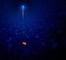 Apophysis Star by Ann Garrett