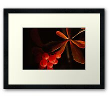 Leaves & berries Framed Print