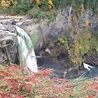 Snoqualmie Falls /Discover The Beauty of Nature Around Me by Waleska Luker