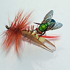 Fly Fishing by Magi