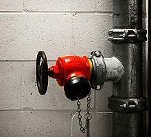In Case Of Fire by dgt0011