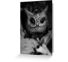 Who Goes There Greeting Card