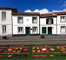 Furnas, Azores by Gaspar Avila