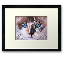 Beautiful Mia Framed Print