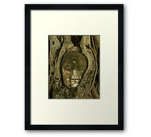 Budda Head in Tree Framed Print