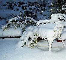 Snow chair ~ Thursday nite by Marjorie Wallace
