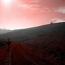 Lone Runner by CXCBEAR