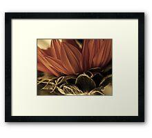 sunburnt Framed Print