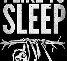 I Like To Sleep by avbtp
