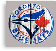 bluejays Canvas Print