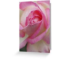 Pink Souffle Greeting Card
