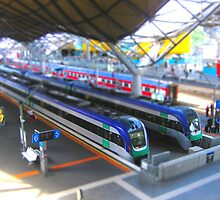 Southern Cross Model Railway by Matt Simner
