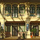 Peranakan houses by richardseah