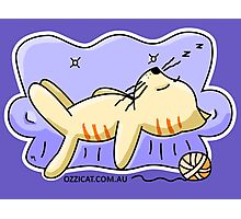Orange Cat Sleeping On Couch Photographic Print