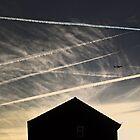 Goodbye,aeroplanes. by twiart