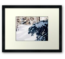 The weight of winter Framed Print