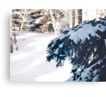 The weight of winter Metal Print