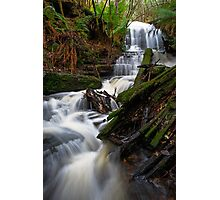 Myrtle Gully Falls Photographic Print