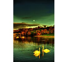 Under the Moon of Love Photographic Print