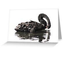 Black Swan-7349  Greeting Card