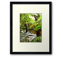NZ - Serenity Framed Print