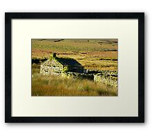 The Hermitage #2 Framed Print