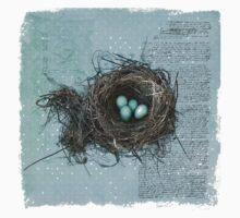 Bird Nest Baby Tee