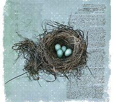 Bird Nest by junkydotcom
